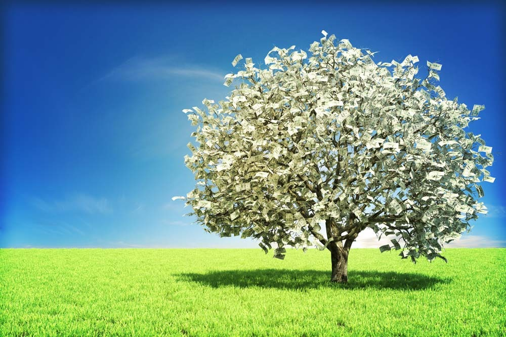 1369881993_money-tree-small